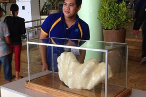 www.617888.com上最大的珍珠,菲律宾珍珠重34公斤(渔民不识货雪藏10年)