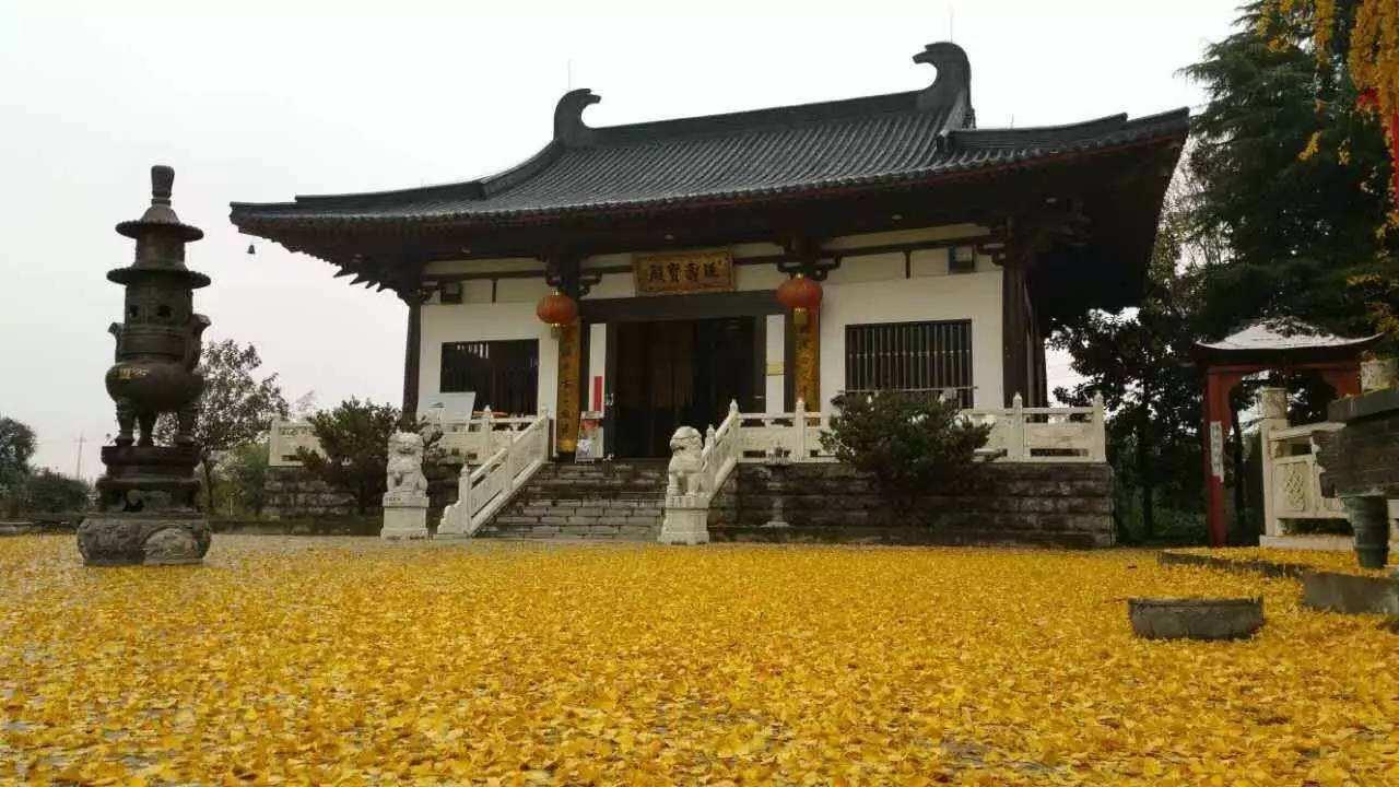 南京好玩的地方排行榜 南京十大旅游景点排名