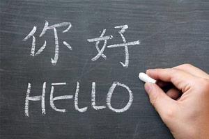 世界语言使用人数排名