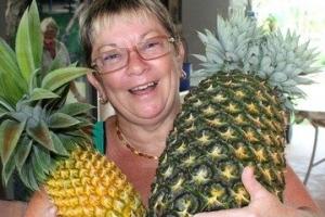 世界上最重的菠蘿