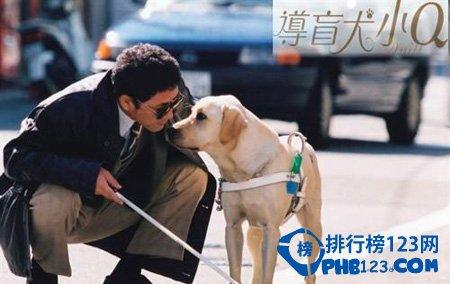 感人日本电影排行榜 感人日本电影推荐