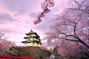 世界上最长寿的国家,日本(人均年龄男78岁、女85岁)