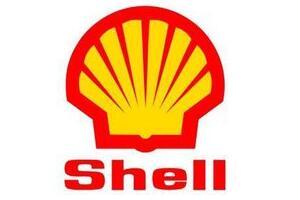 2016荷兰世界五百强企业,皇家壳牌石油公司世界第五