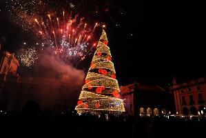 世界上最独特的圣诞树,最奇特的圣诞树大全【图】