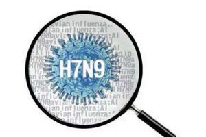 2017年武汉h7n9疫情,确诊十例均为重症患者