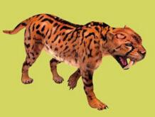 史上最凶残的猫科动物:异剑齿虎(生存在170万年前)