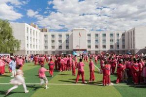 2017年中国小学500强排名,北上广小学教学质量高(附全榜单)