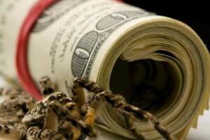 網商貸每個人利率不同,網商貸怎么降低利息