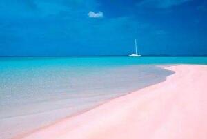 去粉色沙滩要多少钱,粉色海滩全天免费开放