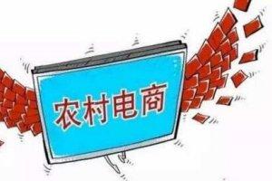 2017发展最好的十家农村电商排行榜,惠农网第一乐淘网第二