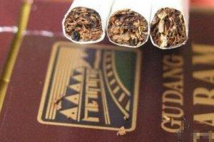 GUDANG GARAM丁香烟多少钱,印尼盐仓香烟价格排行榜(1种)