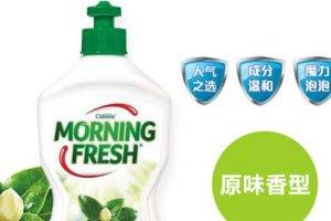 十大進口洗潔精品牌排行榜 進口洗潔精哪個牌子好