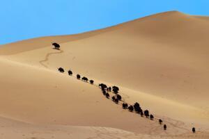 世界上海拔最高的沙漠:库木库里沙漠(最高海拔4706米)