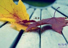 2017年秋分是几点几分 秋分时间是如何计算的?
