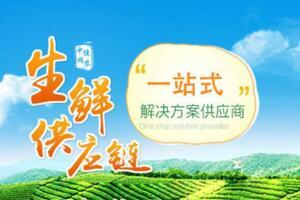 2017年9月福建新三板企业市值排行榜:中健网农27.77亿元居首