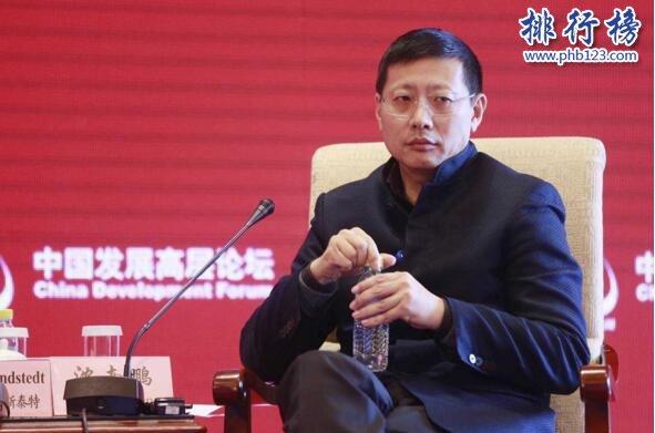 2017中国顶级投资人排行榜TOP50:沈南鹏登顶,熊晓鸽第二