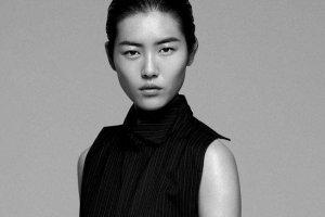 2017维密天使收入排行榜 大表姐刘雯收入650万美元排第八