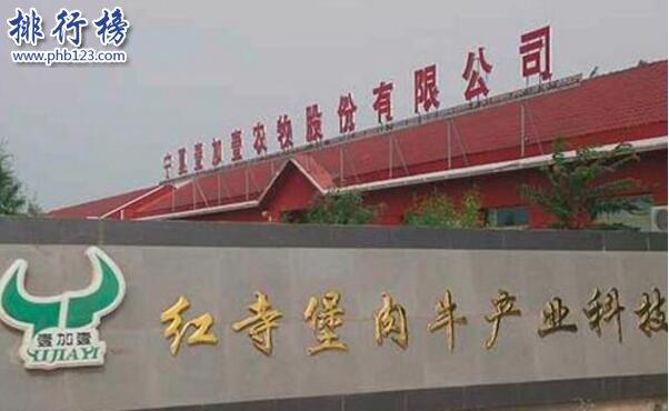 2017年10月宁夏新三板企业市值排行榜:壹加壹36.26亿居首