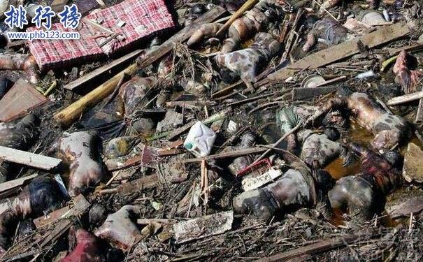 世界十大海啸排名,印度洋海啸死伤29万人(经济损失100亿美元)