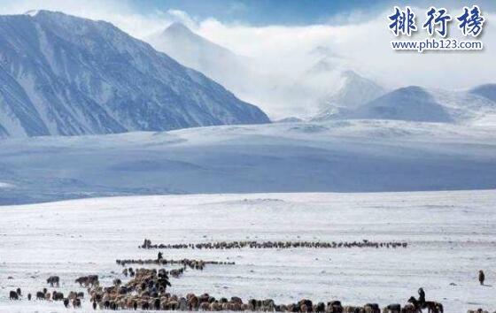 世界上最冷的国家,南极最低气温达零下98摄氏度