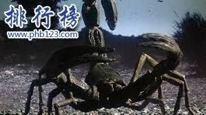 泥盆纪十大恐怖生物 揭开泥盆纪生物大灭绝的原因