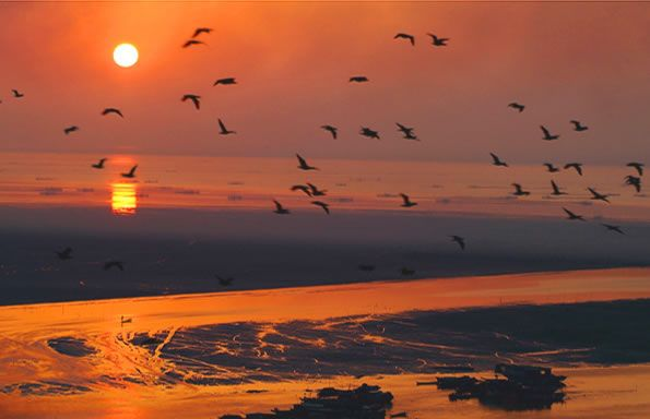 中国五大淡水湖,鄱阳湖面积为五湖之最(3960平方公里)