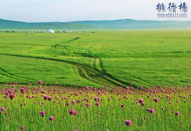 中国四大草原,呼伦贝尔大草原是民族大融合的象征