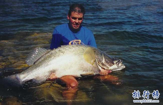世界十大最凶猛淡水鱼,亚马逊鲇鱼能扯断承重400斤的鱼线