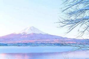 日本最值得去的地方排名2018 去日本旅游必去的地方