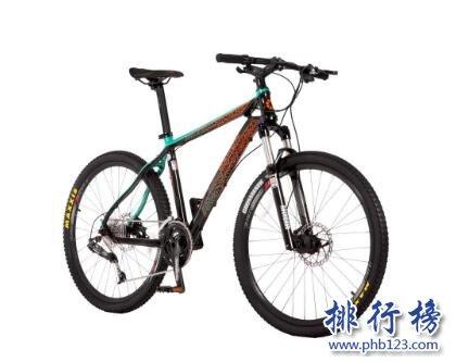 山地自行车哪个牌子好?山地自行车十大品牌排行榜