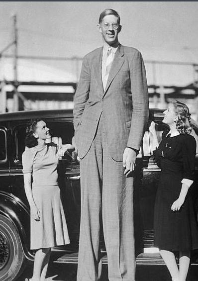 世界十大巨人排行榜:詹世钗高达3.19米(精通十国语言)