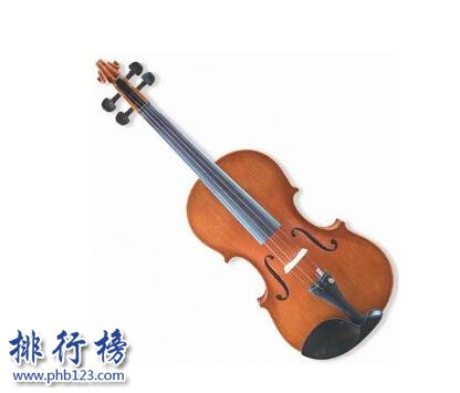 质量最好的小提琴牌子有哪些?小提琴十大品牌排行榜