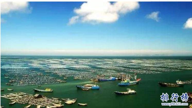 导语:渔业是中国一个重要的资源,各大渔场资源丰富盛产各种鱼类为人民的生活提供食品。那么你可能还不了解中国最知名的渔场是哪几个?今天排行榜123网小编盘点了中国四大渔场,一起来了解一下吧!    中国四大渔场:南部沿海渔场、舟山渔场、黄渤海湾渔场、北部湾渔场    四、北部湾渔场    北部湾渔场位于我国西北部的一个大海湾,是中国四大渔场之一,资源丰富这里盛产各种鱼类如:沙丁鱼、金枪鱼、比目鱼、金线鱼等50几种鱼类,海里还有海鲜类如虾子、螃蟹、扇贝等这里是大力发展水产养殖的场所我们生活中有吃到的牡蛎、文蛤等。涠洲岛、莺歌海等海底石油资源也是非常可观的,沿岸河口地区有许多红树林。    三、黄渤海湾渔场    黄渤海渔场里面的生物有18种其中包括黄鲫、小带鱼、鲈鱼等另外还有浮游动物中华哲水蚤、叶剑水蚤等这里盛产渔期的时间是4月到11月,这里有大量的小黄鱼、虾、蓝点马鲛等这里的水很浅底质都是淤泥,这几年这里大力发展石油项目,海洋的生存环境被破坏,已经渐渐丧失渔场功能。    二、舟山渔场    舟山渔场是浙江、江苏、福建等地的渔民作业区域,自古以来渔业资源就很丰富,在中国四大渔场是最大的一个渔场,这里大概有近360种鱼类,其中包括小黄鱼、带鱼、墨鱼等同时这里也是中国四大家鱼的主要养殖场所,渔民把这里的渔场划分为几个区域嵊山渔场、黄泽渔场、中街山渔场和金塘渔场等9个渔场,由于长期的捕捞导致这里的海洋被污染,资源也衰退了当地政府对这里也实施补救计划。    一、南部沿海渔场    南海渔场是我国热带渔场这里的海洋资源十分丰富,大海里有400多种鱼类如红鱼、飞鱼、石斑鱼等主要鱼类,海产品包括海参、珍珠、鲍鱼等几十种,最名贵的是棱皮龟和梅花参,这里还盛产珍珠、麒麟等十几种宝贝,不过这几年大量的养殖鱼类导致海域污染严重再也没办法生产高质量的海产品了,这几年海域附近开发频繁,其实渔场早就名存实亡了。    结语:以上就是排行榜123网小编为大家盘点的中国四大渔场,这些渔场里面有丰富的渔业资源盛产几百种鱼类,但是这几年石油开发、附近海域又有其它项目导致海洋污染严重,几乎已经名存实亡了。