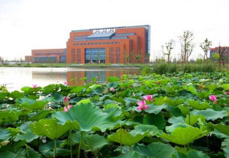 杭州有哪些好的大学?浙江杭州一本大学排名及分数线