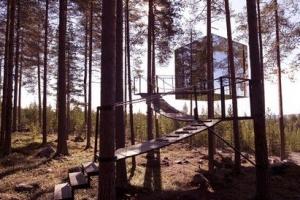 世界十大最奇怪酒店,第一建在树上绳索进入