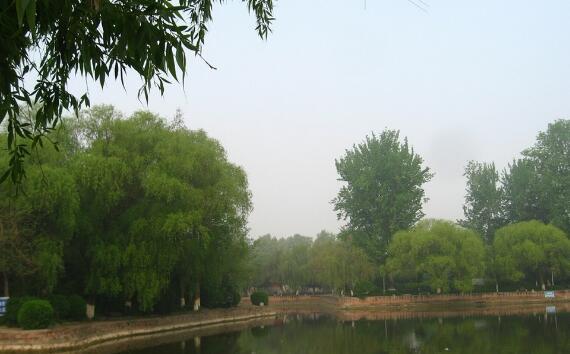 漯河好玩的地方排行榜 神州鸟园全国最大