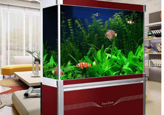 鱼缸什么牌子的好 中国十大鱼缸品牌排名