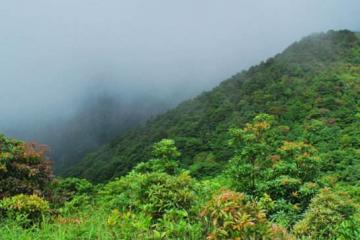 在广州哪里可以爬山 广州十大名山排名榜