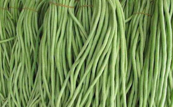十大补肾的青菜排名 补肾蔬菜有哪些