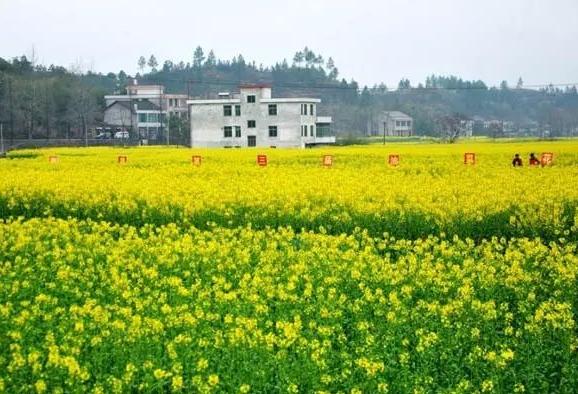湖南人口最多县是哪个 湖南人口大县排名