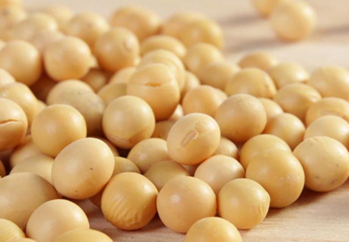 十大高蛋白食物排行榜 养生又减脂,有你爱吃的吗