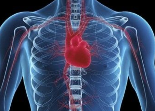 2019全国心血管外科医院排名top100