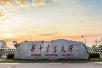 2021武汉211大学名单排名榜:华中师范第5 第4财经类重点大学