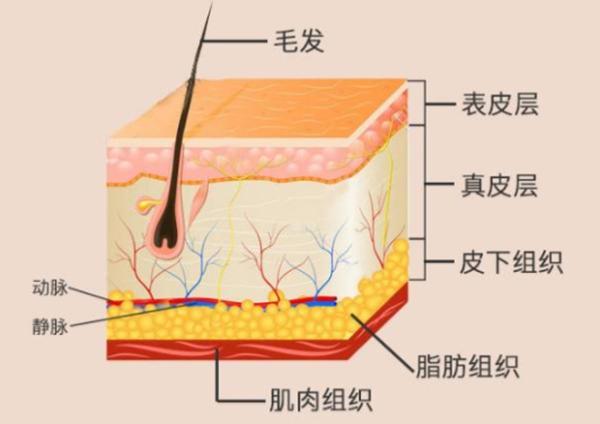 上海皮膚病醫院排名 【全國十大皮膚病科醫院】2019全國皮膚病科醫院排名top100