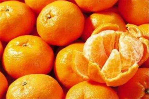 漳州南靖十大特产 正冬蜜是明朝朝廷御用贡品