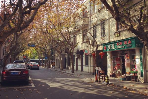 上海年轻人必去的地方 朱家角上榜,田子坊最受欢迎