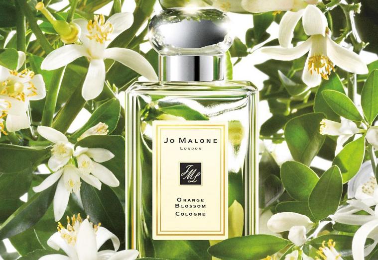 祖马龙香水味道排名 你最爱的是哪一款呢