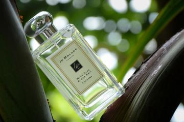 世界最好闻的女士香水 必入系列,不买后悔