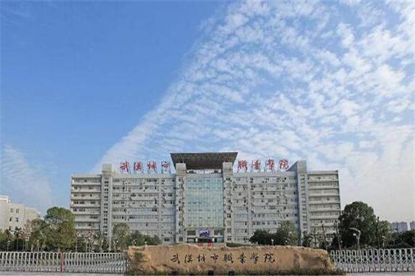 武汉专科大学有哪些 2019武汉专科大学排名及分数线