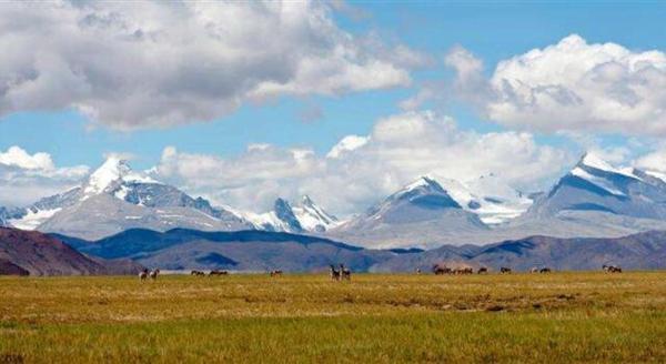 2017年各省转移支付排名,西藏人均4万排名第一